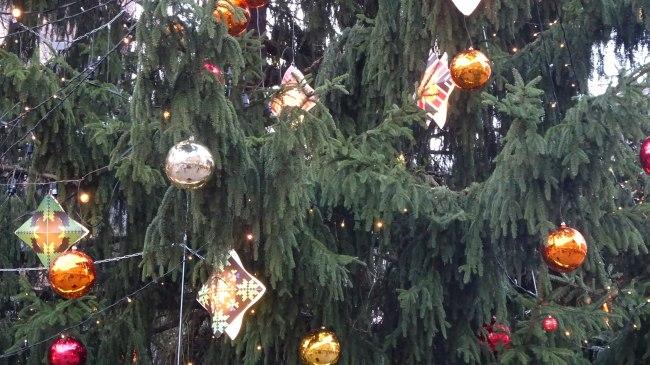 Weihnachtsbaum auf dem Dom-Platz