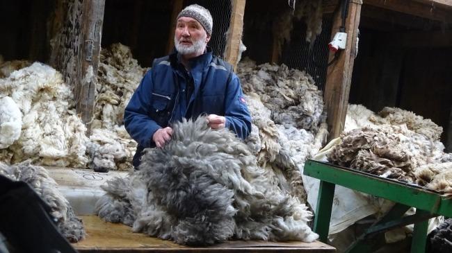 Oliver Henry, the WoolMan