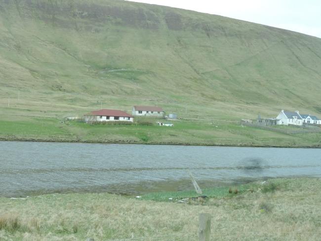 Wal-Schlachtplatz