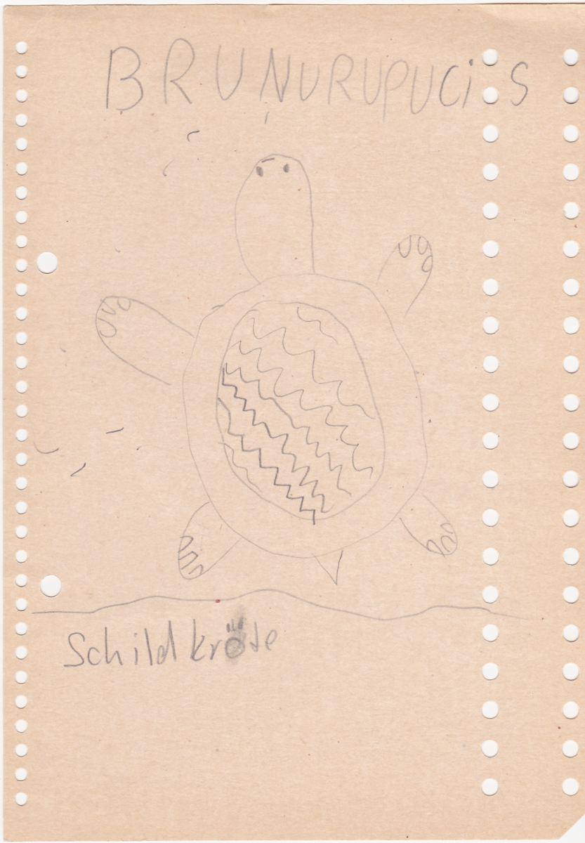 Brunurupucis - Schildkröte