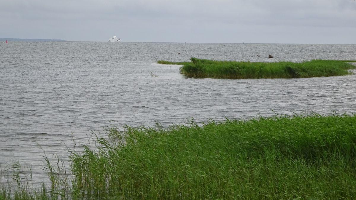 Am baltischen Ufer