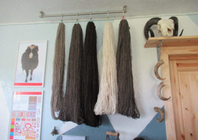 Im Wollzentrum der Tierärztin