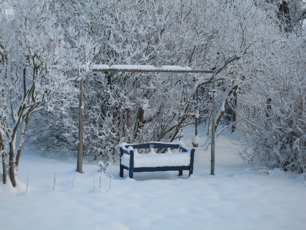Schnee in Gribow 2011