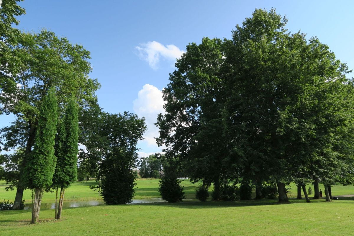 Park in Dzerbene