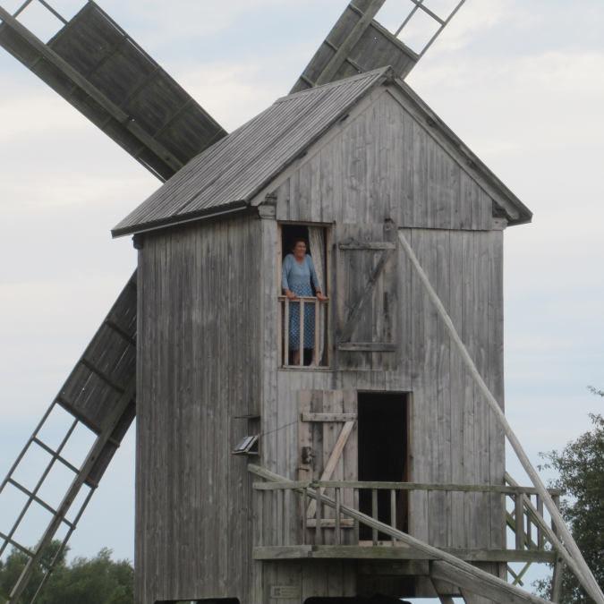 Auf Saaremaa